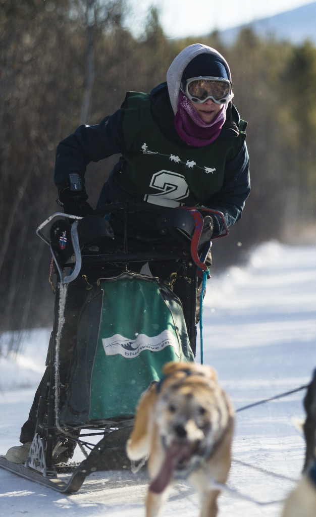 Mandy Johnson races during the 10-dog-10-mile sled event at the Babe Southwick Memorial race on Feb.18, 2017 outside Whitehorse. Photo by Marissa Tiel