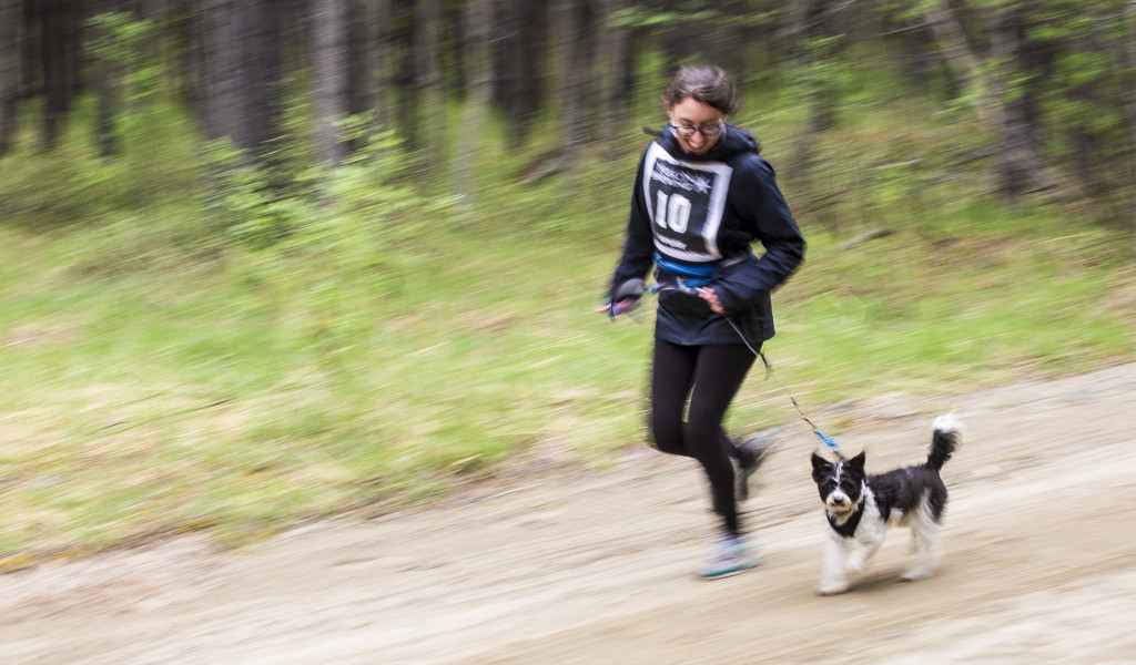 Rebecca Jones races in the one-dog canicross Hot Hound race at Takhini Hot Pools on June 11, 2017.